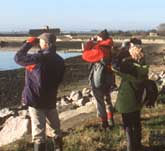 Picture of a birdwatching group in Chichester Harbour